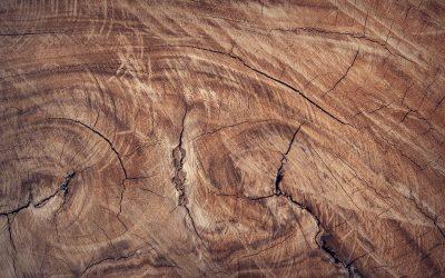 Finitions du bois